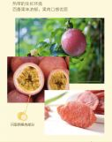 Dried Passion Fruits