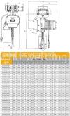 ShuangGe Electric ChainHoist 3tx5m 5m/min 3kW 115kg WHD5-0301SE Shuang Ge Electric Chain Hoist Electric Chain Hoist Chain Block & Chain Hoist