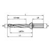 TDMX ・ 5 x D ・ Side Lock Shank ・ Metric TDMX ・ Top Drill™ Modular X  Widia Hole Making