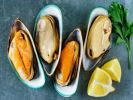 Half Shell Green Mussel Scallop & Oyster