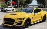Ford Mustang GT500 Shelby conversion Mustang Ford