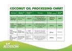 Blossom Organic Cooking Coconut Oil 750ml 有机烹饪椰油 油品系列