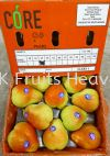 South Africa Forelle Pear 45's  Import Fruits