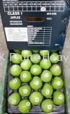China Granny Smith Green Apples 150's  Import Fruits