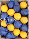 South Africa Valencia 88's  Import Fruits