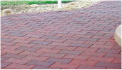 Recycled Rubber I Paver Equestrian Surfacing