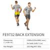 Back Extension FE9732    EXOFORM Strength Machine Commercial GYM