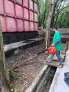 Landscaping Service Industry Cleaning