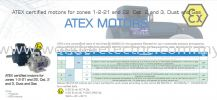 MOTIVE S.R.L ITALY - DELPHI EX Series Asynchronous Three-Phase Electric Motors ATEX Explosion Proof Motor