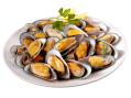 New Zealand Half Shell Green Mussels