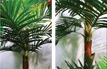 8ft Coconut Double Tree AP106 floristkl Artificial Plant (Sell & Rent)