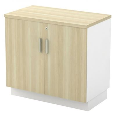 Low Cabinet with Swinging Door (AIM9YD)