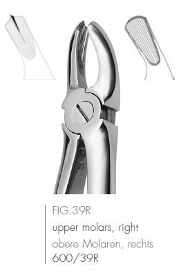 Extracting Forceps English Pattern FIG.39R