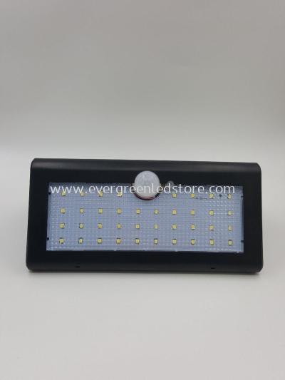 Solar Motion Sensor Light C2253
