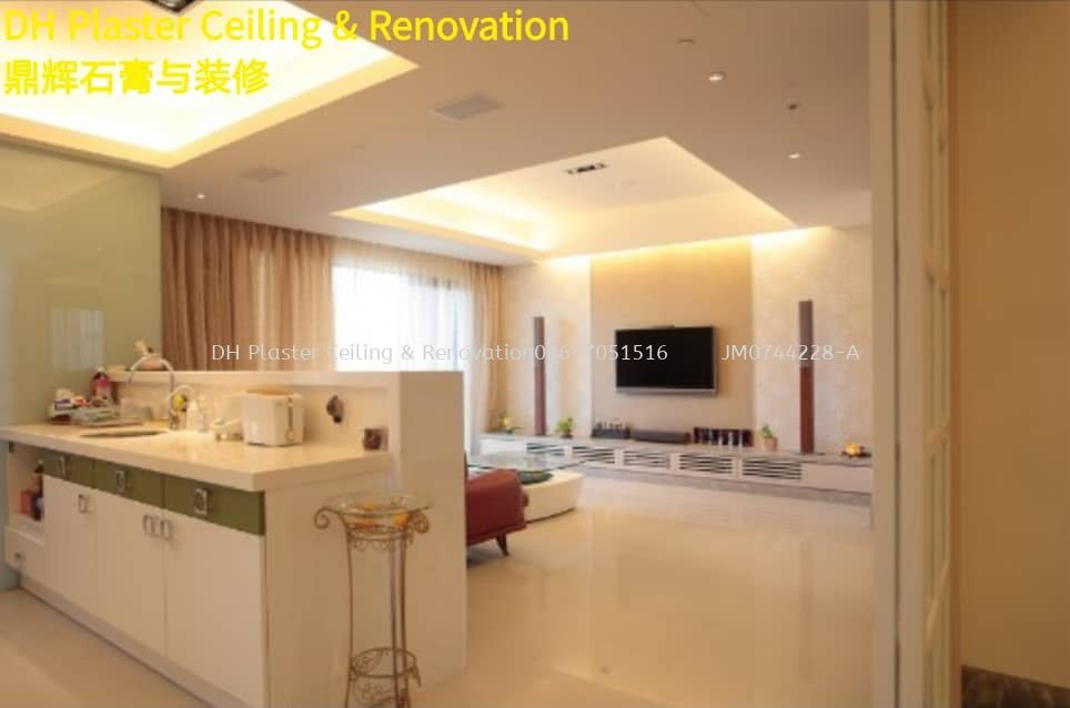 Plaster Ceiling and Living Room Design~DH