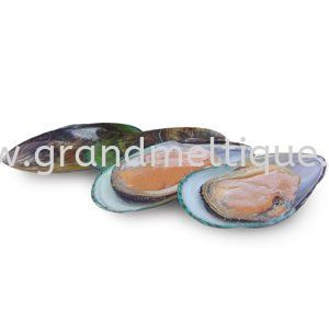 New Zealand half shell mussel 半壳青口