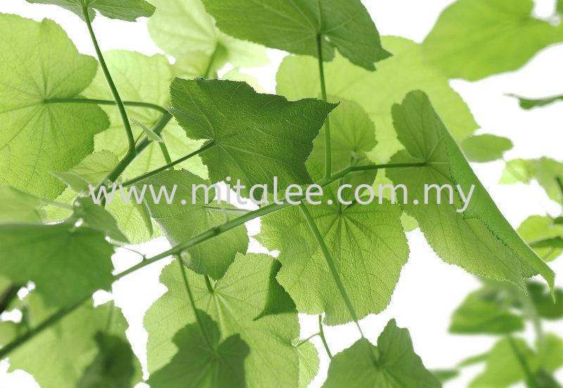 8-506_Oxygen_prn Komar Photomural Vol:14 Wallpaper (0.53m x 10m) Johor Bahru JB Malaysia Kuala Lumpur KL Supplier, Supply | Mitalee Carpet & Furnishing Sdn Bhd