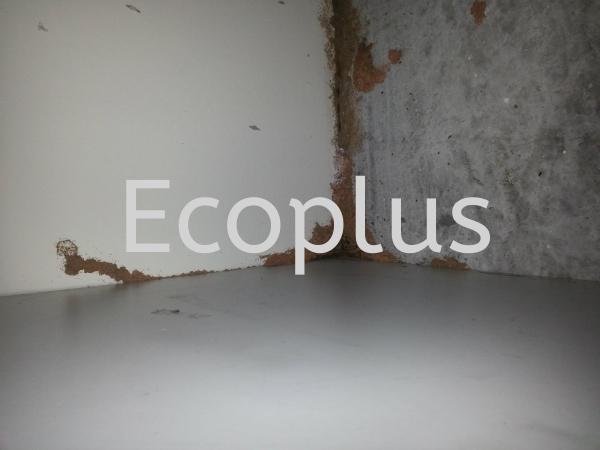 检查白蚁,地点:士姑来 新山花园 其他    | EcoPlus Pest Control