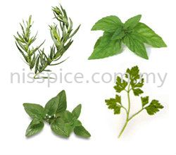 Herbs Herbs Skudai, Johor Bahru (JB), Malaysia. Manufacturers, Suppliers, Supply, Supplies | NIS Spice Manufacturing Sdn Bhd