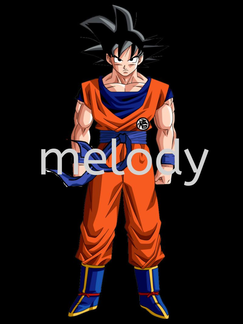 Dragon Ball Goku Costume - 1006 0601