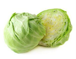 Round Cabbage Fresh Products Shah Alam, Selangor, Kuala Lumpur (KL), Malaysia. Supplier, Supply, Supplies, Importer | Lifestyle Ventures Sdn Bhd