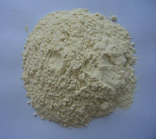 Garlic Powder Dehydrated Products Shah Alam, Selangor, Kuala Lumpur (KL), Malaysia. Supplier, Supply, Supplies, Importer | Lifestyle Ventures Sdn Bhd