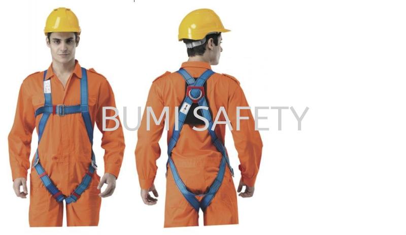 Economic Full Body Harness Fall Protection Selangor, Kuala Lumpur (KL), Puchong, Malaysia Supplier, Suppliers, Supply, Supplies | Bumi Nilam Safety Sdn Bhd