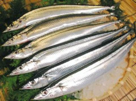 Sanma / Pacific Saury Seafoods Singapore Supplier, Distributor, Importer, Exporter   Arco Marketing Pte Ltd