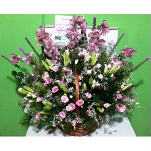 Cymbidium, Lily, Canation Basket Arrangement (BA-093)