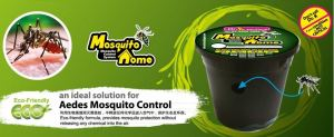 MOSQUITO HOME