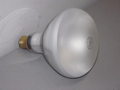 GE R40 300W Pool Lamp