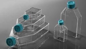 Cell Culture Flask Cell Culture Flask Cell Culture Products Selangor, Malaysia, Kuala Lumpur (KL), Puchong Supplier, Suppliers, Supply, Supplies | Lab Sciences Engineering Sdn Bhd