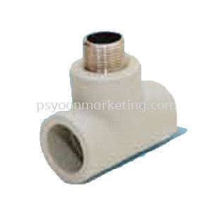 Threaded Male Tee Transition Fittings PP-R Hot & Cold Water Kuala Lumpur (KL), Malaysia, Selangor Supplier, Suppliers, Supply, Supplies | PS YOON Marketing Sdn Bhd