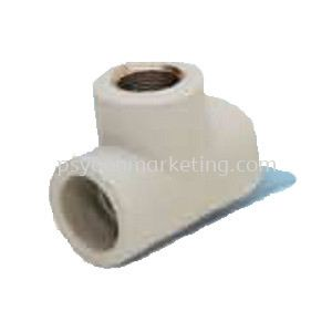Threaded Female Tee Transition Fittings PP-R Hot & Cold Water Kuala Lumpur (KL), Malaysia, Selangor Supplier, Suppliers, Supply, Supplies | PS YOON Marketing Sdn Bhd