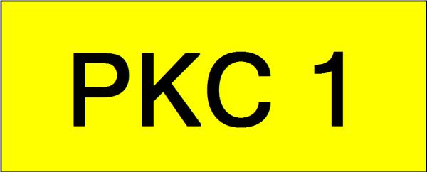 VVIP Number Plate (PKC1) All Plate Johor Bahru (JB), Kuala Lumpur, KL, Malaysia. Service | AAA Premium Sdn Bhd