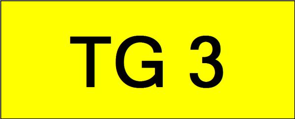 Number Plate TG3 Superb Classic Plate Johor Bahru (JB), Kuala Lumpur, KL, Malaysia. Service | AAA Premium Sdn Bhd