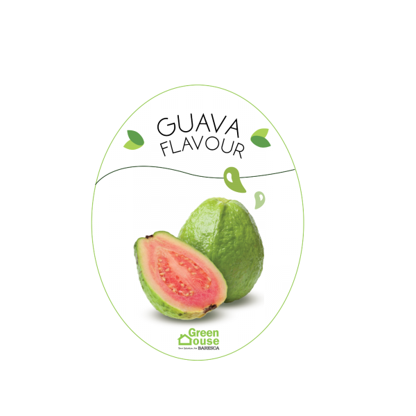 Flavour_Guava Flavour-01 Flavouring Malaysia, Selangor, Kuala Lumpur (KL), Serdang Food, Bakery, Manufacturer, Supplier | Green House Ingredient Sdn Bhd