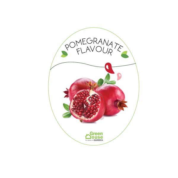 Flavour_Pomegranate Flavour Flavouring Malaysia, Selangor, Kuala Lumpur (KL), Serdang Food, Bakery, Manufacturer, Supplier | Green House Ingredient Sdn Bhd