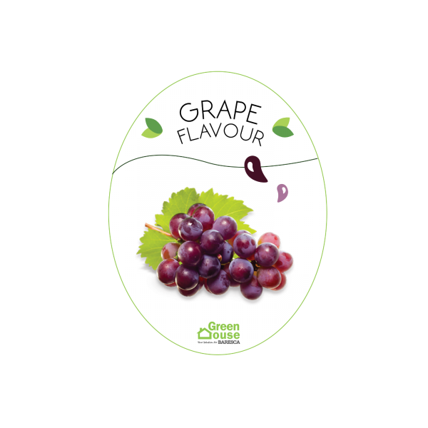 Flavour_Grape Flavour Flavouring Malaysia, Selangor, Kuala Lumpur (KL), Serdang Food, Bakery, Manufacturer, Supplier | Green House Ingredient Sdn Bhd