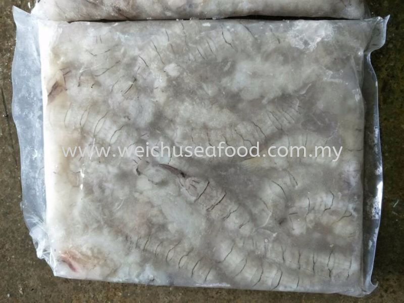 White Mantis Prawn Meat Frozen Shrimp Selangor, Malaysia, Kuala Lumpur (KL), Klang Supplier, Suppliers, Supply, Supplies | Wei Chu Seafood Supply Trading Sdn Bhd