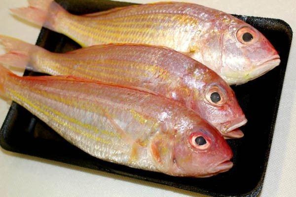金线鱼 冷冻鱼类 中文版 Selangor, Malaysia, Kuala Lumpur (KL), Seri Kembangan Supplier, Supply, Wholesaler, Retailer   C H Seah Fishery