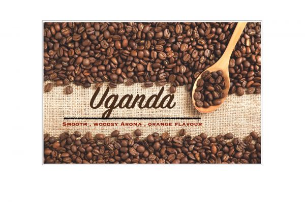 Uganda Bugisu AA Coffee Bean Penang, Malaysia, Bukit Mertajam Supplier, Suppliers, Supply, Supplies | Casey Roastery Coffee