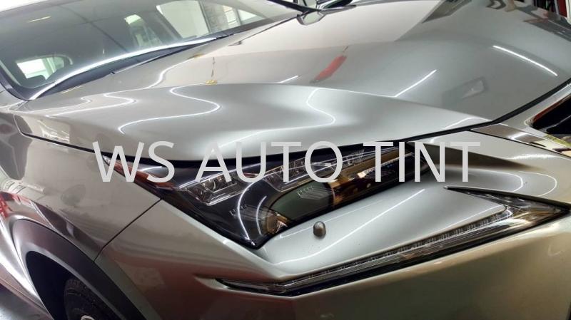 Car Wax Car Detailing Selangor, Malaysia, Kuala Lumpur (KL), Puchong, Sepang Service, Shop | WS AUTO TINT & SPA ACCESSORIES