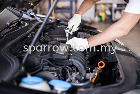 Car Service Penang, Jelutong, Air Hitam, Georgetown, Malaysia Supplier, Suppliers, Supply, Supplies | Sparrow Accessories & Car Wash