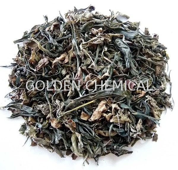Green Tea Tea Base Malaysia, Penang Beverage, Powder, Manufacturer, Supplier | Golden Chemical Sdn Bhd