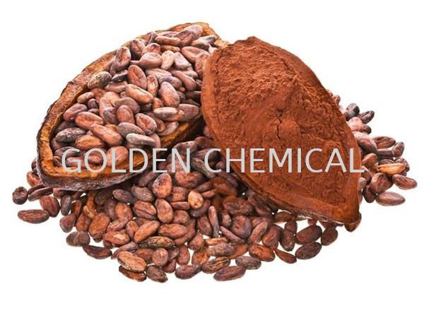 Alkalized Cocoa/High Fat/Natural Chocolate Base Malaysia, Penang Beverage, Powder, Manufacturer, Supplier | Golden Chemical Sdn Bhd
