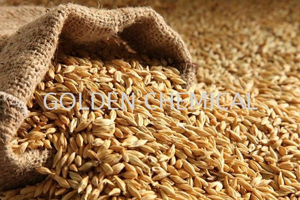 Dark/Light Malt Base Malaysia, Penang Beverage, Powder, Manufacturer, Supplier | Golden Chemical Sdn Bhd