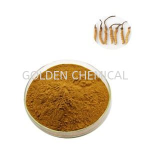 Cordycep Sinensis Extract Powder Herbal Base Malaysia, Penang Beverage, Powder, Manufacturer, Supplier | Golden Chemical Sdn Bhd