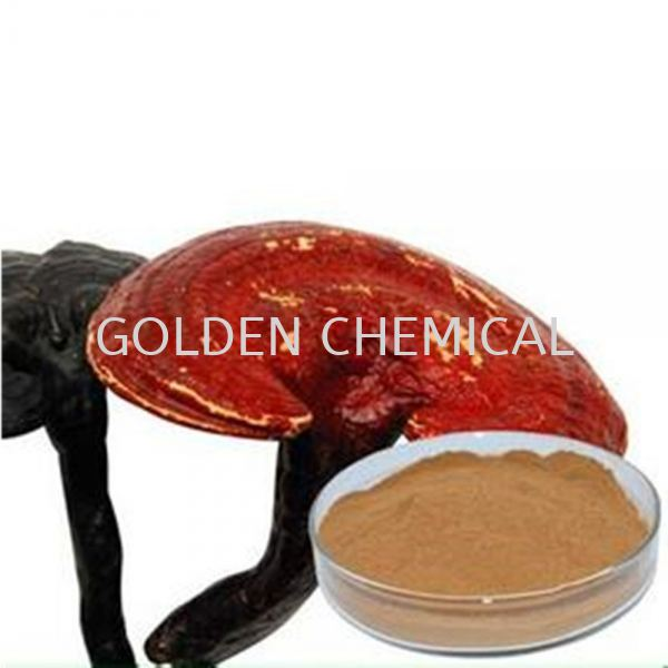 Ganoderma Extract Powder Herbal Base Malaysia, Penang Beverage, Powder, Manufacturer, Supplier | Golden Chemical Sdn Bhd