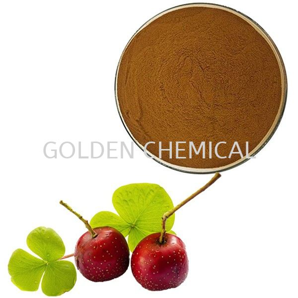 Hawthorn Berry Extract Powder Herbal Base Malaysia, Penang Beverage, Powder, Manufacturer, Supplier | Golden Chemical Sdn Bhd